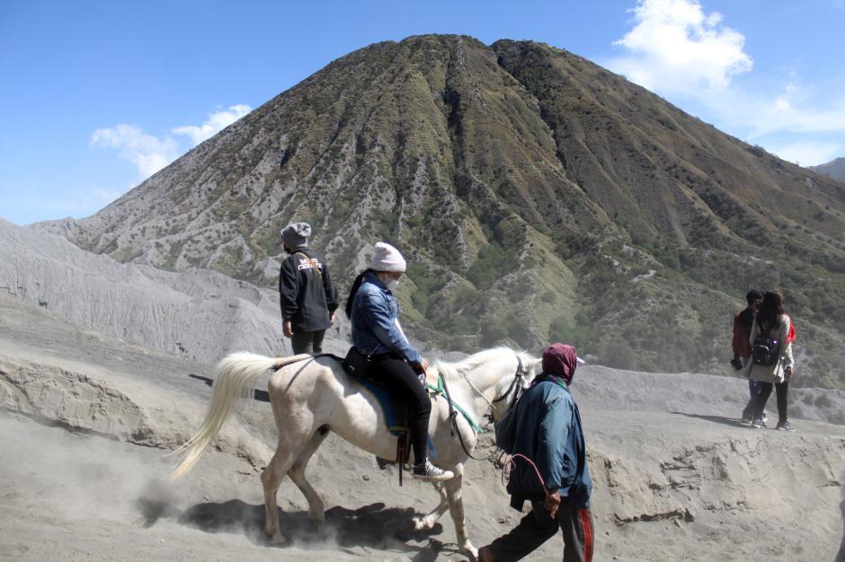 Jasa Penyewaan Kuda di Gunung Bromo-1