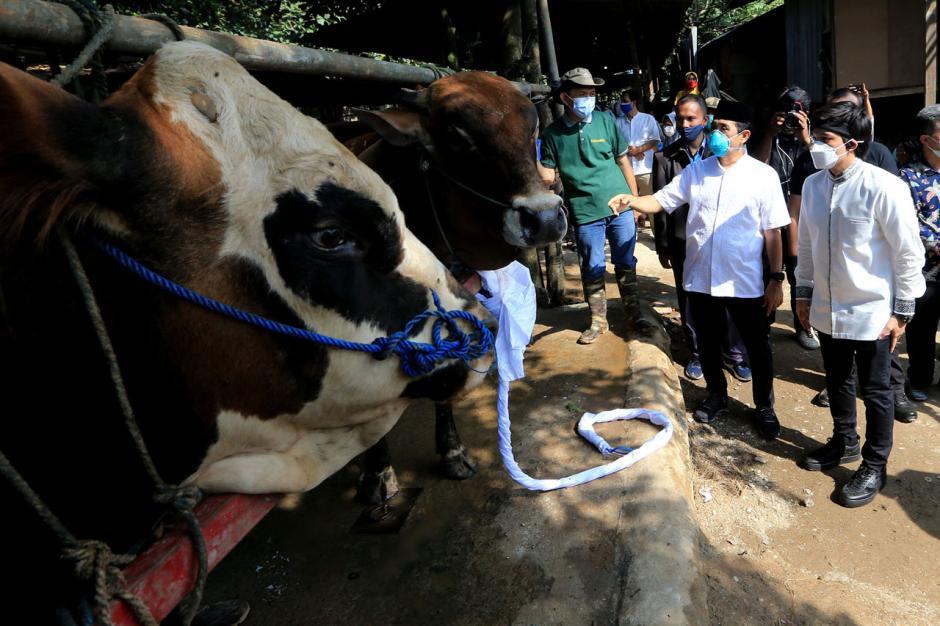 Pembagian Daging Kurban Dapat Membantu Warga Terdampak Pandemi-0