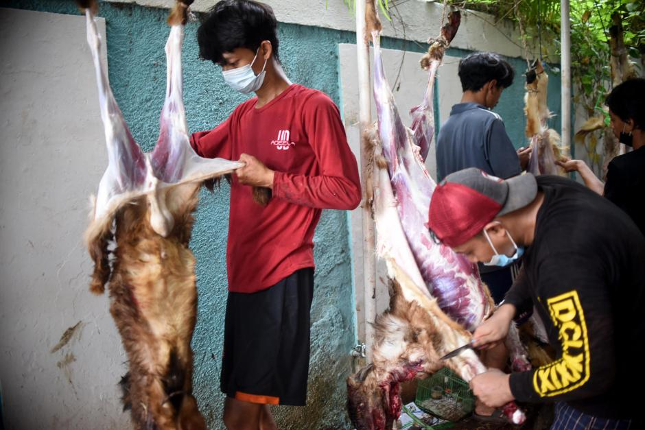 KNPI Salurkan 6.000 Kantong Daging Kurban-1
