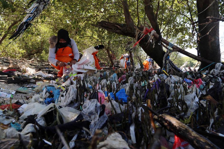 Miris, Sampah Plastik Menumpuk di Pantai Timur Surabaya-1