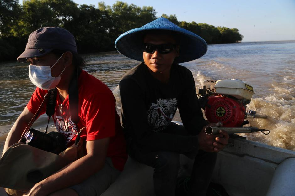Satwa Liar di Balik Rindangnya Hutan Bakau Ekowisata Mangrove Wonorejo Surabaya-4